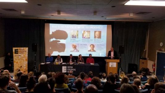 Wildlife 'porn' or a conservation tool? A summary of our debate on nature documentaries
