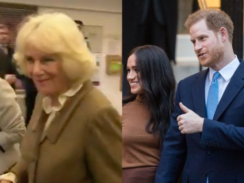 Camilla, Duchess of Cornwall was asked if she'll miss Harry and Meghan and her facial expression says everything