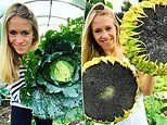 Jewellery designer whose creations were sported by celebs decided to become a gardener instead