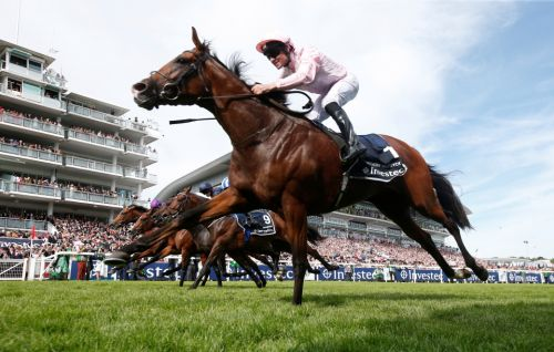 Newmarket Friday entries: Derby hero Anthony Van Dyck and top stayer Stradivarius set to face off in Coronation Cup