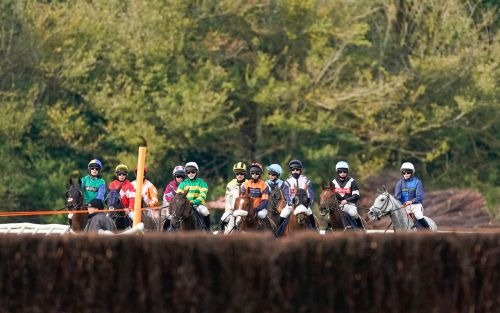 Marlborough racing tips and best bets for Sunday, November 1