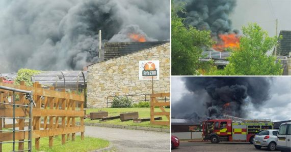 Fire breaks out at newly re-opened zoo in Scotland