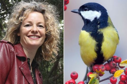 Springwatch host Kate Humble says we all need to get out and hear the birds sing