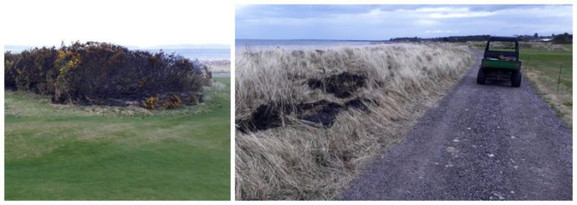 Councillor issues stern warning on wasting emergency resources following north golf course fires