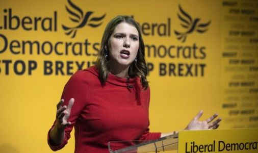 Lib Dem humiliation: Swinson's sly plot to oust Rees-Mogg sparks outrage - 'Got a nerve!'