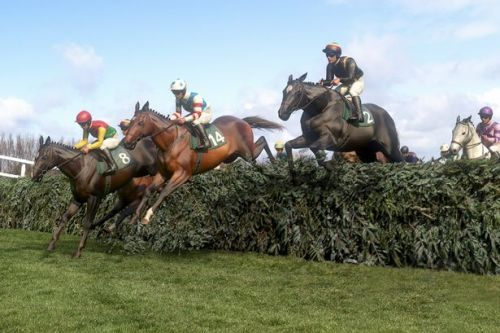 Virtual Grand National 2020 Live results, tips, predictions and pinstickers