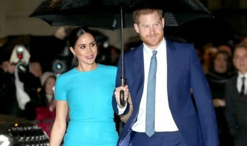 Meghan and Harry safety concerns: Bodyguard warns 'something catastrophic' could go wrong