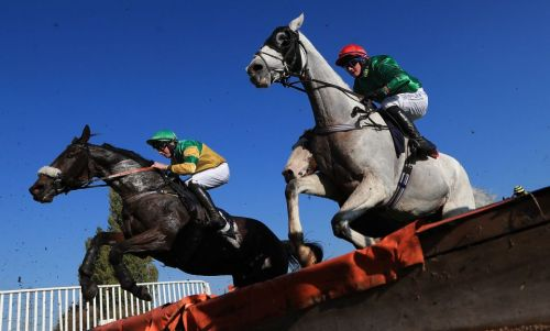 Templegate's racing tips: Newcastle and Southwell - Betting preview for Friday