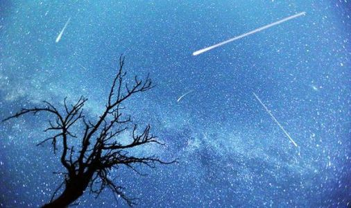 Meteor shower 2020: The Orionids peak this week - Here's what to expect from the shower