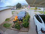 Lexus delivery driver watches as his car crashes in California