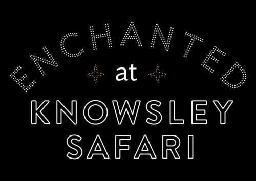 Enchanted Christmas at Knowsley Safari
