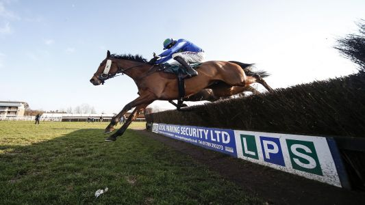 Tony Calvin: Cobra De Mai an attractive price for Kempton on Saturday