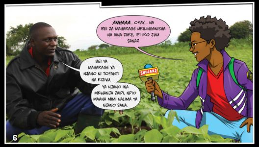 How comics, pop music and drama deliver down-to-earth messages to help African farmers improve their soil