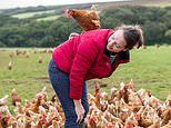 Poultry farm gives away tens of thousands of eggs to food banks after Covid causes sales to plummet