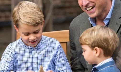 Prince Louis in sweet nod to brother Prince George in adorable Royal Family photo