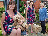 Dog psychic who can read your mutt's mind:RACHEL HALLIWELL put her cockapoo on the couch