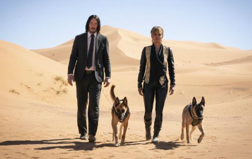 'John Wick 5' to shoot back-to-back with 'John Wick 4' next year