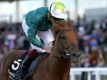 Robin Goodfellow's racing tips: Best bets for Wednesday, October 27