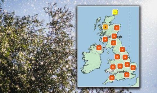 Pollen count: UK forecasted HIGH pollen counts - where hay fever patients are most at risk
