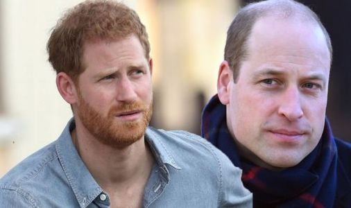 Prince Harry and William row: Duke of Sussex 'heartbroken' over 'painful' family break-up