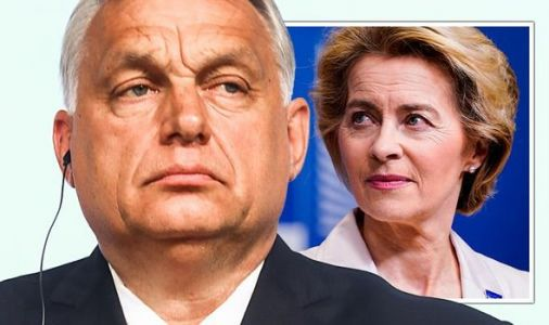 EU on the brink: Hungary warns it will quit this decade unless Brussels bullying stops