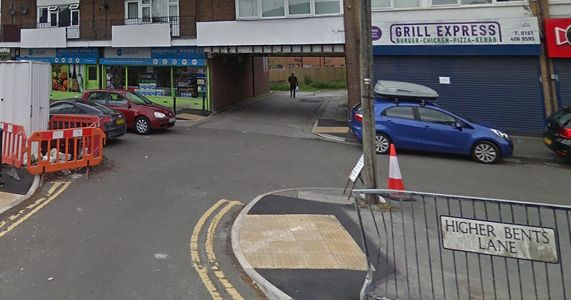 Manhunt after woman was sexually assaulted in alleyway