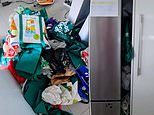 Mum Emmy Rachelle claims 'every Aussie' keeps a pile of grocery bags on the side of their fridge