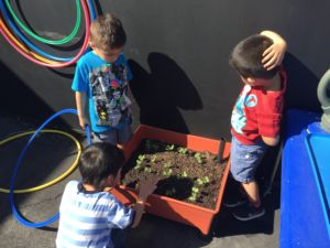 Inside and Out, From Exhibits to Gardens: Hands-On Activities for Growing Great Veggies & Fruits
