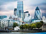 ALEX BRUMMER: Private equity predators land in the UK