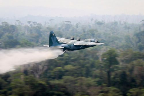 How big is the Amazon rainforest and how much has been destroyed by the fire so far?