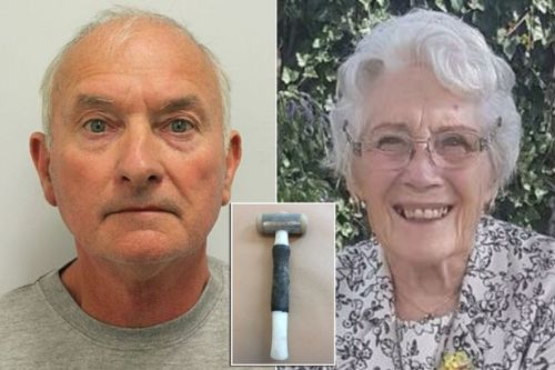 Handyman jailed for killing widow, 85, by bludgeoning her to death with hammer
