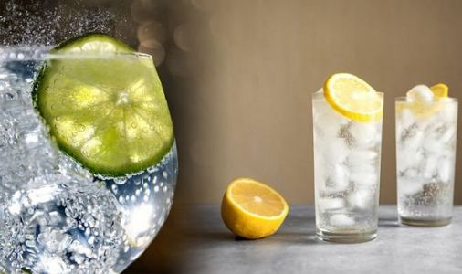 Gin cocktail recipes: How to make these SIX simple and delicious cocktails from gin