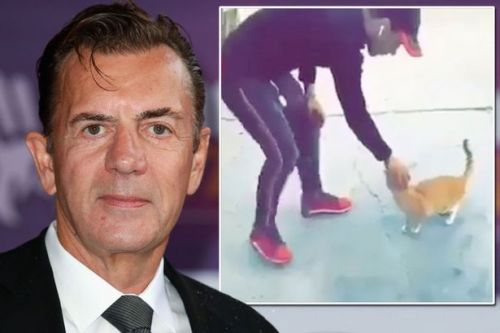 Duncan Bannatyne offers £5,000 reward to name 'oxygen thief' thug who attacked ginger cat