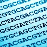The award-winning researcher behind next generation sequencing