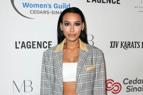 Glee star Naya Rivera missing after her son, four, found alone on boat in lake