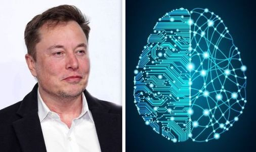 Elon Musk's AI warning: Artificial Intelligence is a 'potential danger to the public'