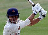 Cricket to be big winner of new £300m bailout of summer sports