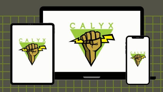 Calyx: is this free and unlimited VPN worth downloading?