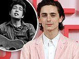 Timothee Chalamet's Bob Dylan biopic is currently not happening due to COVID-19 pandemic