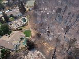 Incredible drone images show charred trees and burnt-out homes as eighth person dies in California