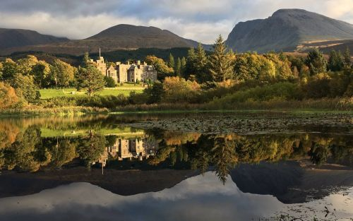 14 fabulous hotels for woodland walks in Britain, from Fort William to the New Forest