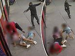 Gunman fires at man and young kids in middle of Bronx street as NYC violence continues to surge