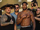 Brain, brawn and bravado: Johnny Jelson's guide to how Anthony Joshua and Andy Ruiz Jnr compare