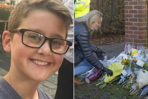 Boy, 12, killed in hit and run outside school died of severe head injury