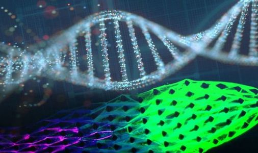 Regenerating ROBOTS: Machines made from DNA show signs of LIFE - and can eat and GROW