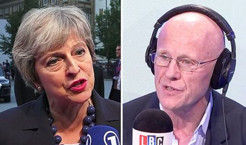 'I voted for a PROPER Brexit!' Theresa May's EU exit strategy savaged by ex Phones 4U boss