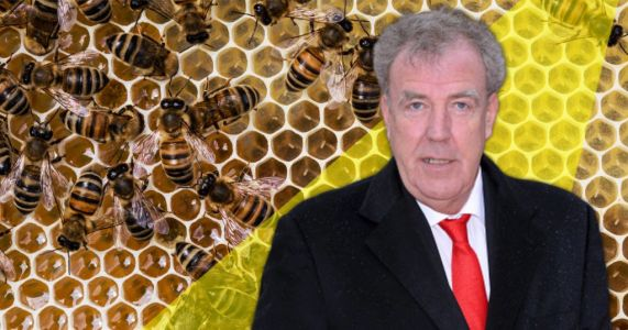Jeremy Clarkson buys a quarter of a million bees because they are 'the planet's keystone species'