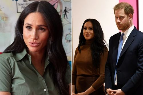 Meghan Markle 'says she and Harry are being picked on over royal brand restrictions'