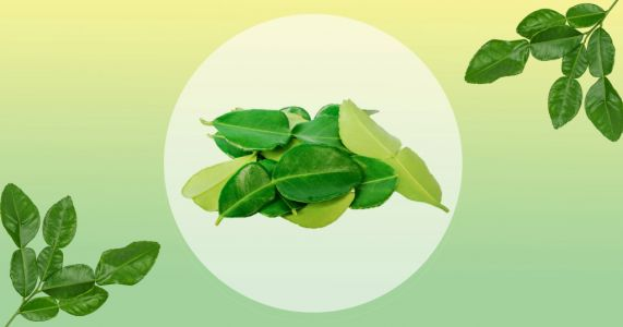 Waitrose renames 'Kaffir lime leaves' because the word was historically a racial slur