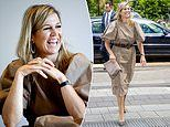 Queen Maxima of the Netherlands dons £40 H&M dress as she greets healthcare workers in Amsterdam